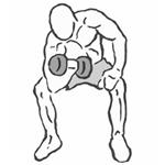 Koncentrovaný bicepsový zdvih