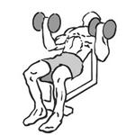 Bicepsový zdvih s jednoručkami na šikmej lavici