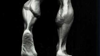 kinesiologia-iv-lytkove-svaly