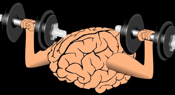 zvysenie-svalovej-sily-moze-zlepsit-fungovanie-mozgu
