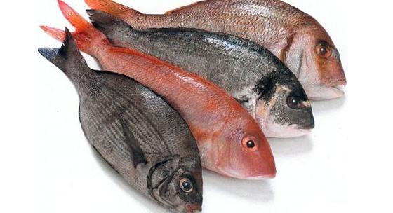 Jedzte viac rýb pre lepší sluch