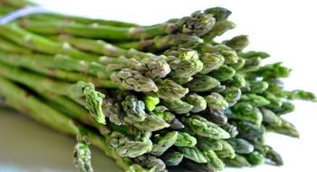 nizkosacharidove-druhy-zeleniny-ktore-vam-pomozu-schudnut