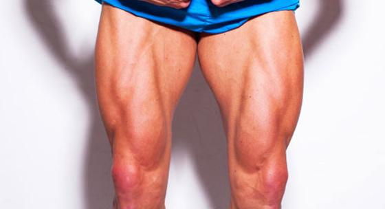 Kinesiológia IX. – svaly stehna