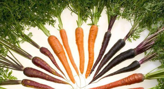 Mrazená zelenina je zdravšia, ako si možno myslíte