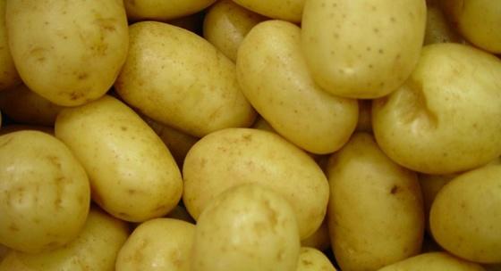 zemiaky-vieme-co-jeme